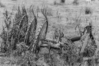 old farm_machine BW_ldpfotoblog
