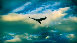 herron_park_clouds-ldpfotoblog_web1