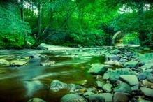 t_park_river_low_web