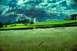 pendle-hill_farm_horses_ldpfotoblog