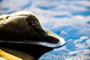 nature_lucaspuchphoto_web-20