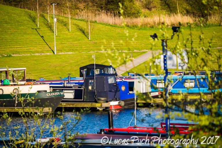 springtimelancashire _lucaspuchweb-13