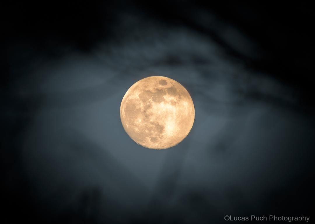 Mistic Moon_web-1.jpg